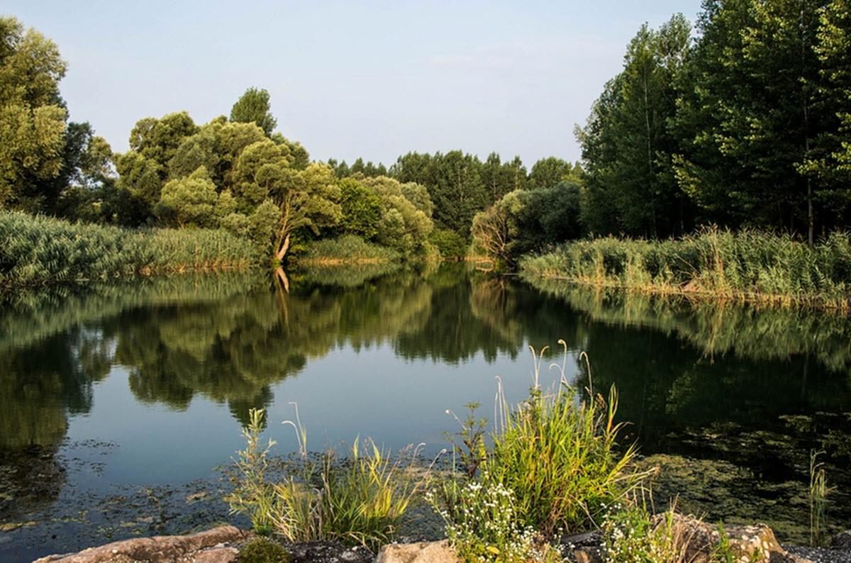 Donau-Auen nationalpark